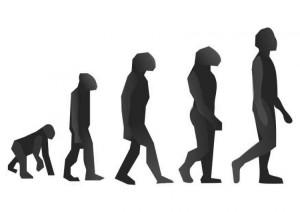 evolucion-t10985
